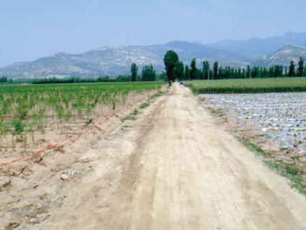 JASオーガニック認定栽培商品を推進