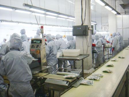 HACCP,ISO規格同等の管理ができている工場