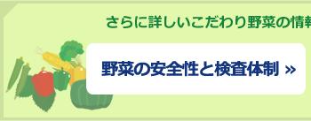 ボタン:野菜の安全性と検査体制